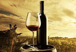 Wine Tour Limo Syracuse Ny